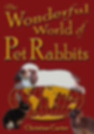 Hop, skip and jump into Pet Rabbit World!