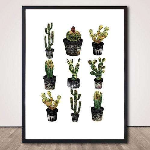 칵티 | Cacti