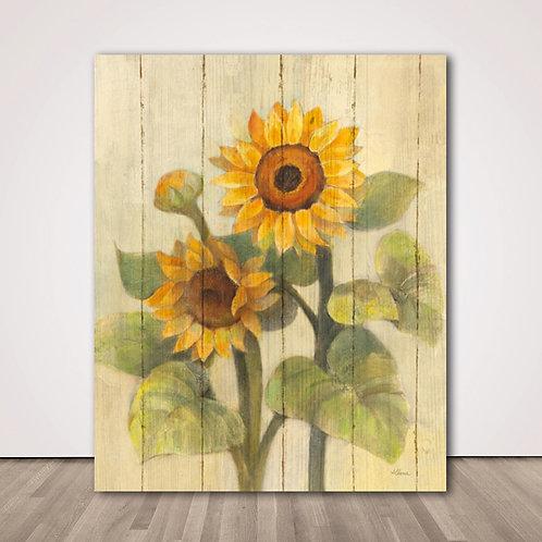 해바라기2 | Summer Sunflowers II