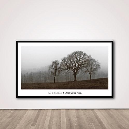 어텀포그 | Autumn Fog