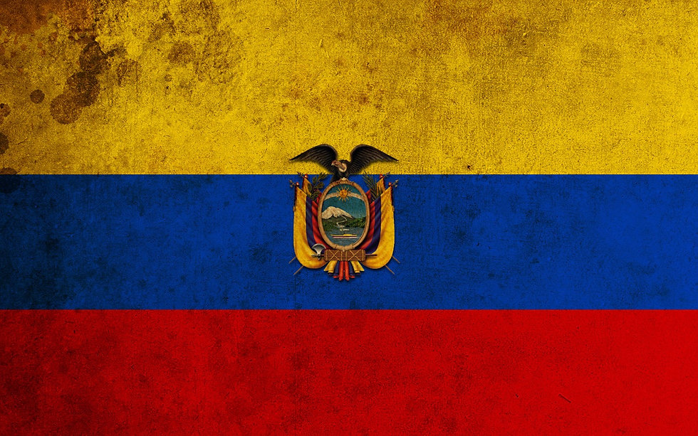 grunge_ecuador_flag_by_fuzzynoise_edited.jpg