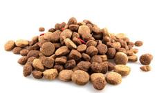 dog-food-500x500.jpg