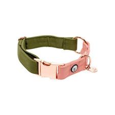 eat-play-wag-collars-harnesses-olive-blossom-collar-design-milk-shop-14651011924071_grande