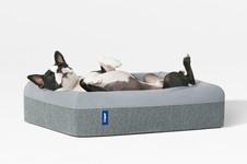 casper_dog_mattress_03.jpg