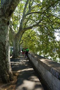 Fußmarsch am Tiber entlang