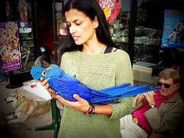 bird01_edited.jpg
