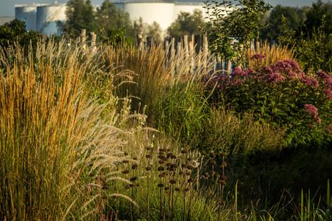 Landschappelijke tuin langs het Albertkanaal
