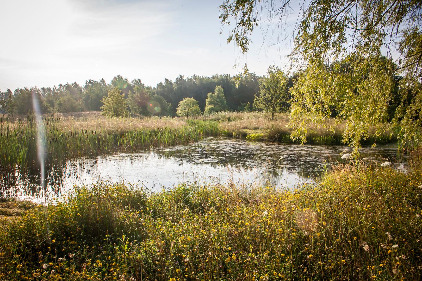 Natuurtuin Midden-Limburg