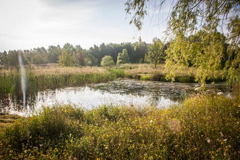 Nature garden Midden-Limburg