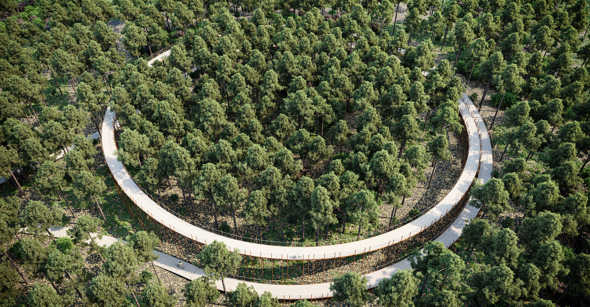 Curieus fietspad in Hechtel-Eksel tussen de kruinen van de bomen
