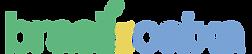 brasilnacaixa_logo_300px.png