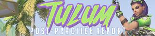 Tulum Squad Banner
