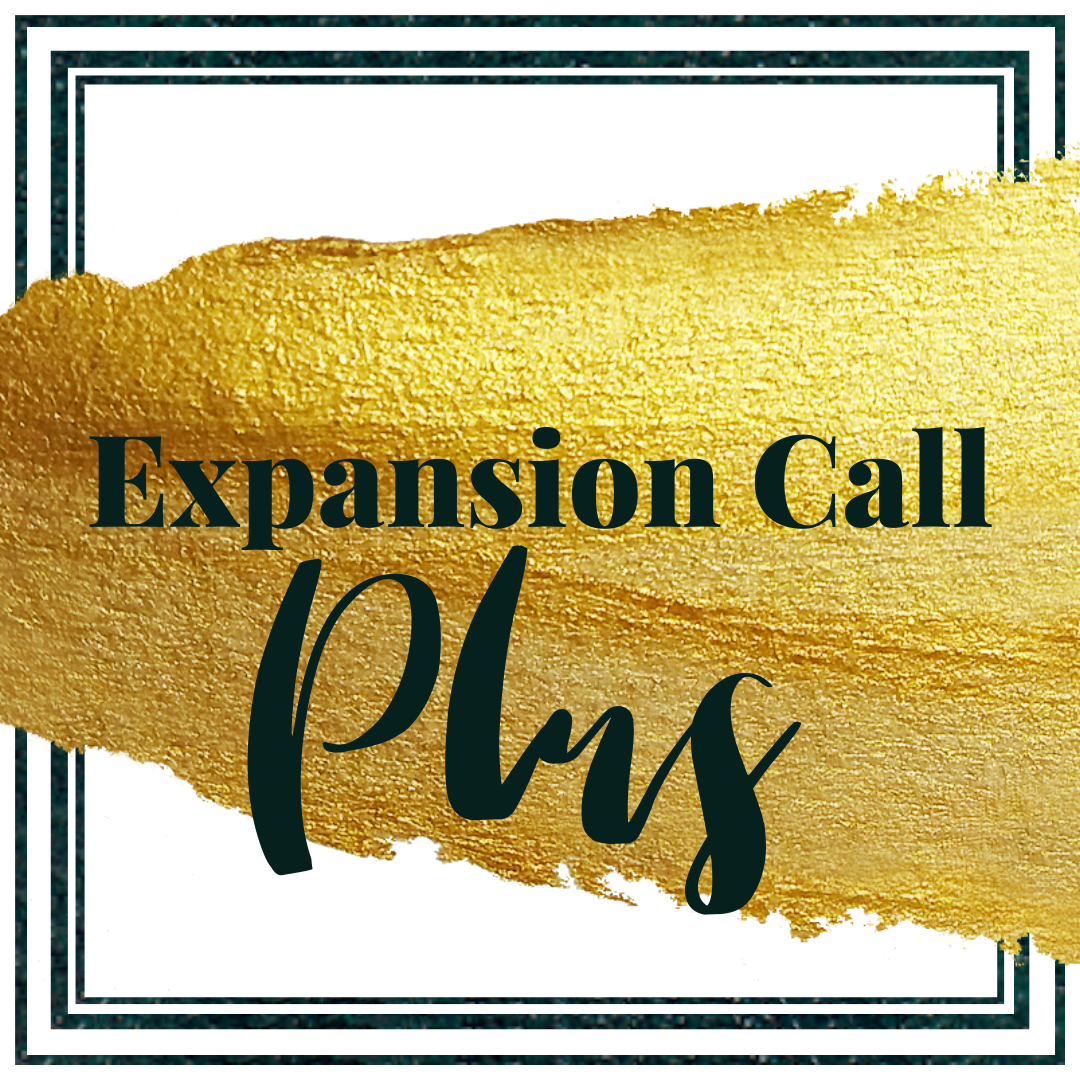 1-on-1 Expansion Call PLUS