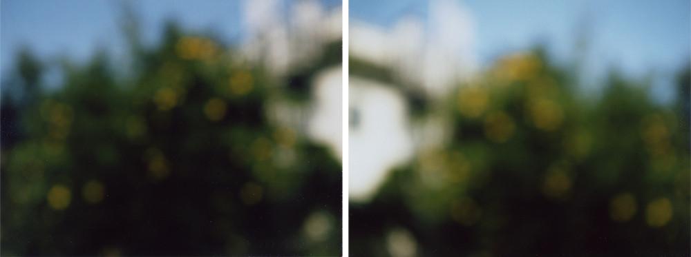 yukihiromatsuoka polaroid sample001.jpg