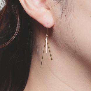light ray fook & earring