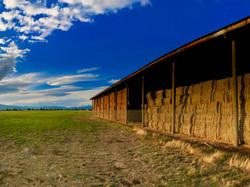 RHC hay field 1