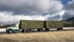 RHC Trucking