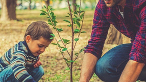 18 ECO FRIENDLY FATHER'S DAY GIFT IDEAS