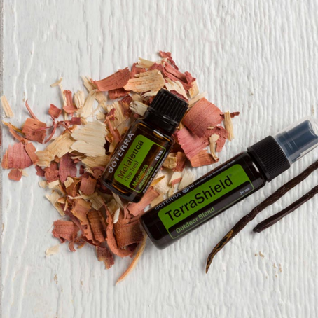 Join the Adventure with TerraShield® and Melaleuca