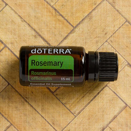 Oil Spotlight: Rosemary Oil Uses and Benefits