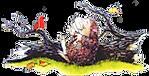 Hedgehog 5.png