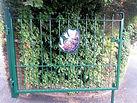 Brambles Gate 1.jpg