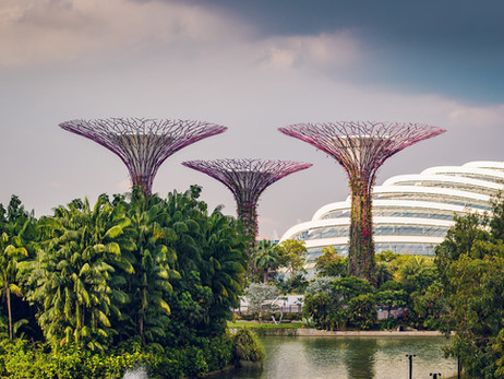 Singapore Fintech Association To Provide Startups Access To R3 Corda Blockchain