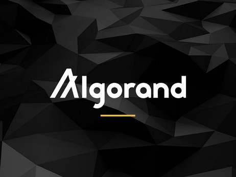 New Upgrade Of Algorand Shows That The Project Is Eyeing The Burgeoning DeFi Space