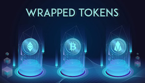 A Brief Overview On Wrapped Token
