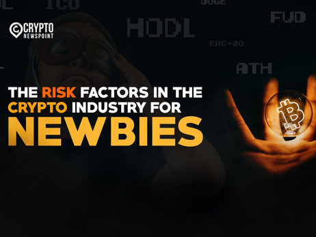 The Risk Factors In The Crypto Industry For Newbies