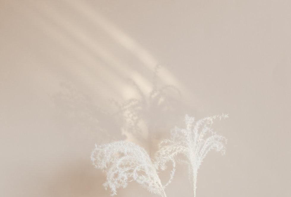 pexels-karolina-grabowska-4203095_edited