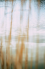 pexels-markus-spiske-2061170_edited.jpg