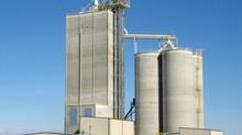 China eyes expansion of feed production