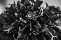 Gazay_Wedding-35