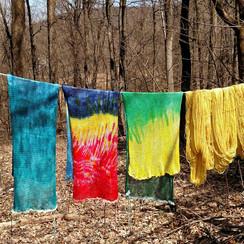 Sock Blanks drying.