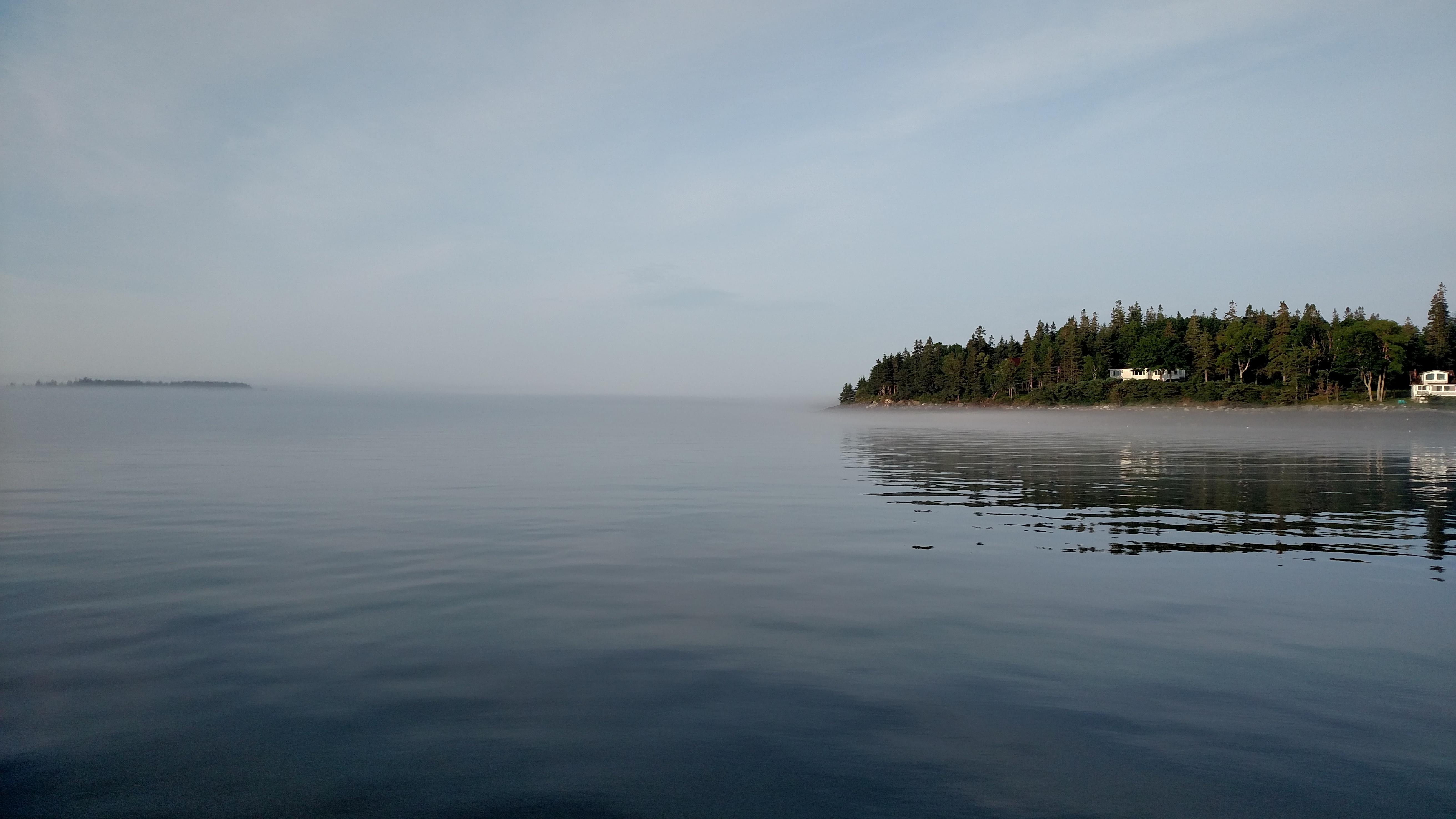 Maine Coast Fog