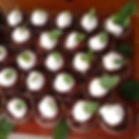 ChocolateMintDessertMaine619.jpg