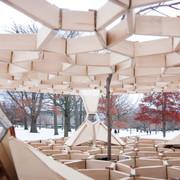 Structure System: Treehugger Pavilion