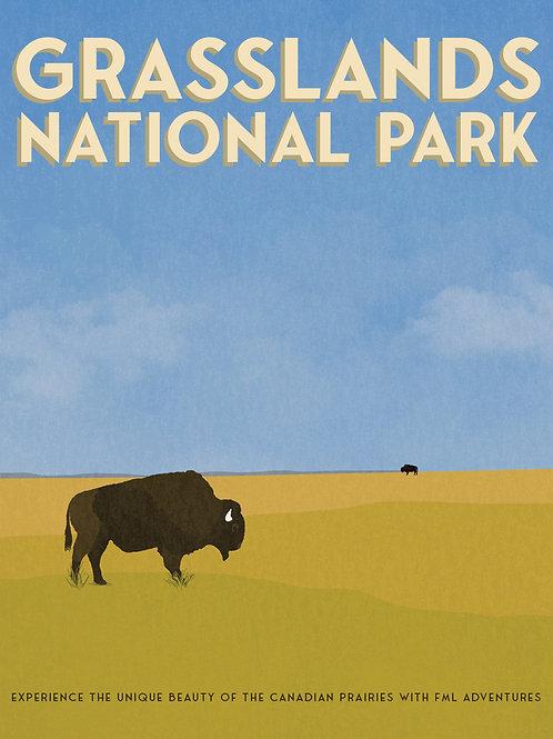 Grasslands Postcard