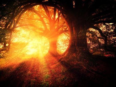 Dein inneres Licht - Freitag, 3. August 19:00 Uhr Lichtheilungs-Abend