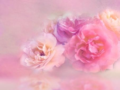 Die Mystik der Rose und ihre Engel: Lichtheilungsabend am 1. Juni