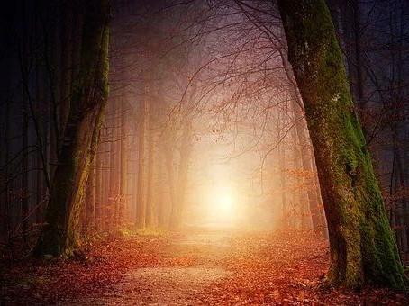 Aller-Seelen: Lichtheilungs-Abend am 2. November, ein Fest auch deiner geliebten Seele
