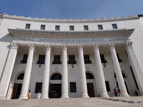 The Best of Manila - The National Museum of Natural History