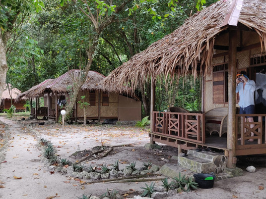 WESTERN SUMATRA. A true eco-lodge is hard to find – unless you find Rimba