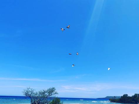 Siquijor Island - mysticism and deserted beaches