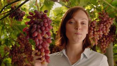 Biedronka - Grapes