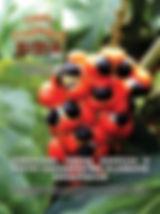 A edição 34 de abril da melhor revista de agronegócios do Brasil você encontra em: www.revista100porcentocaipira.com.br