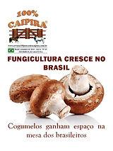 A edição 63 de setembro da melhor revista de agronegócios do Brasil você encontra em: www.revista100porcentocaipira.com.br