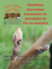 capa 80.jpg