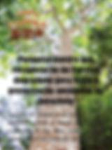 A edição 67 de janeiro da melhor revista de agronegócios do Brasil você encontra em: www.revista100porcentocaipira.com.br